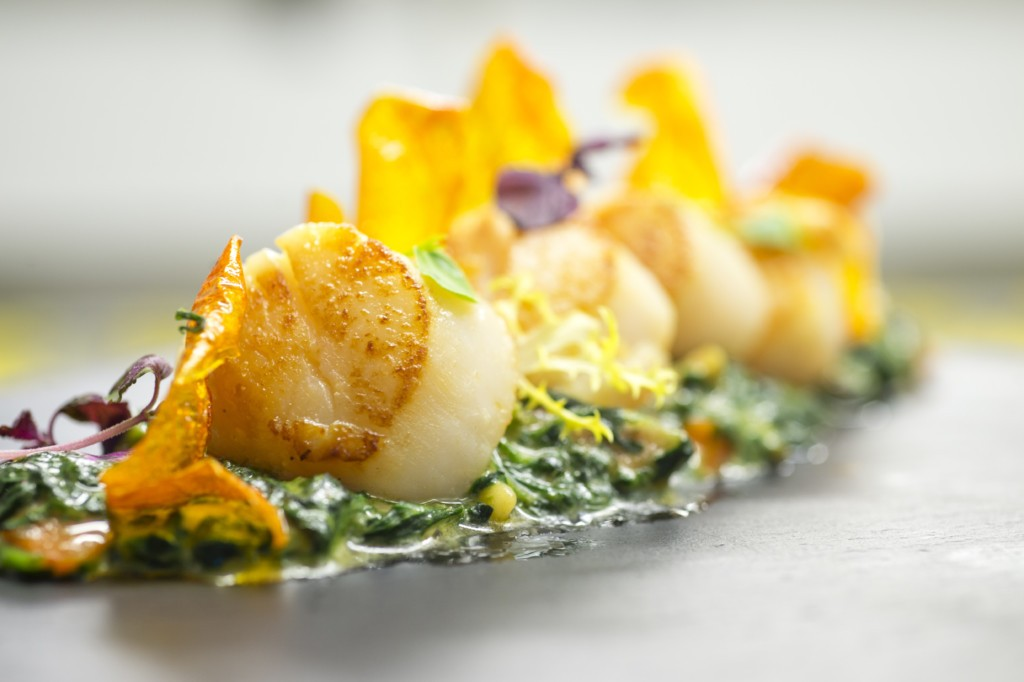 dish with scallops made in the finca prats hotel