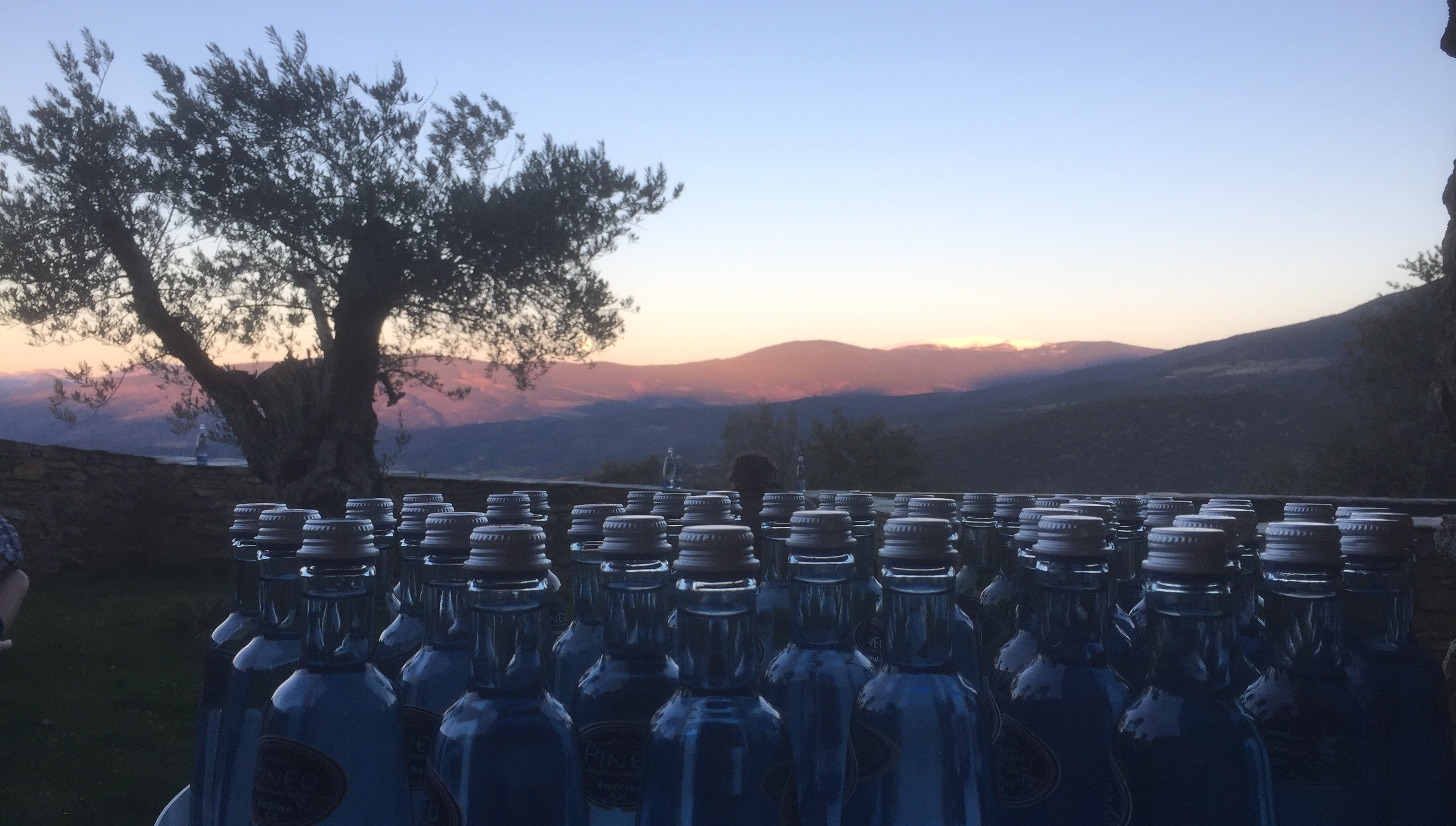 Pineo bottles in the mountains