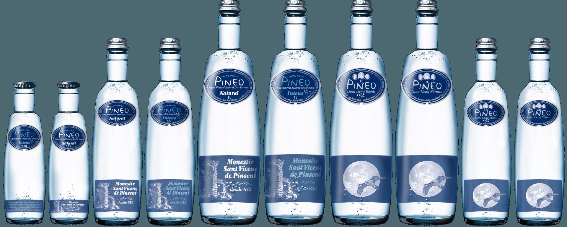 Pineo Wasser, nur für Restaurants und andere Gastronomiebetriebe bestellbar