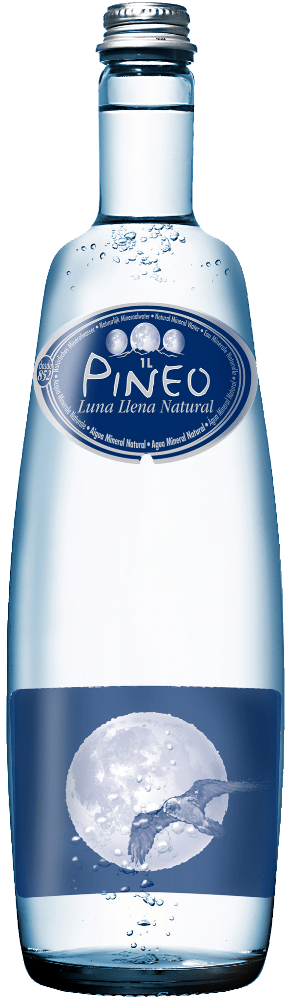 Pineo moon water 1 l, healthy mineral water