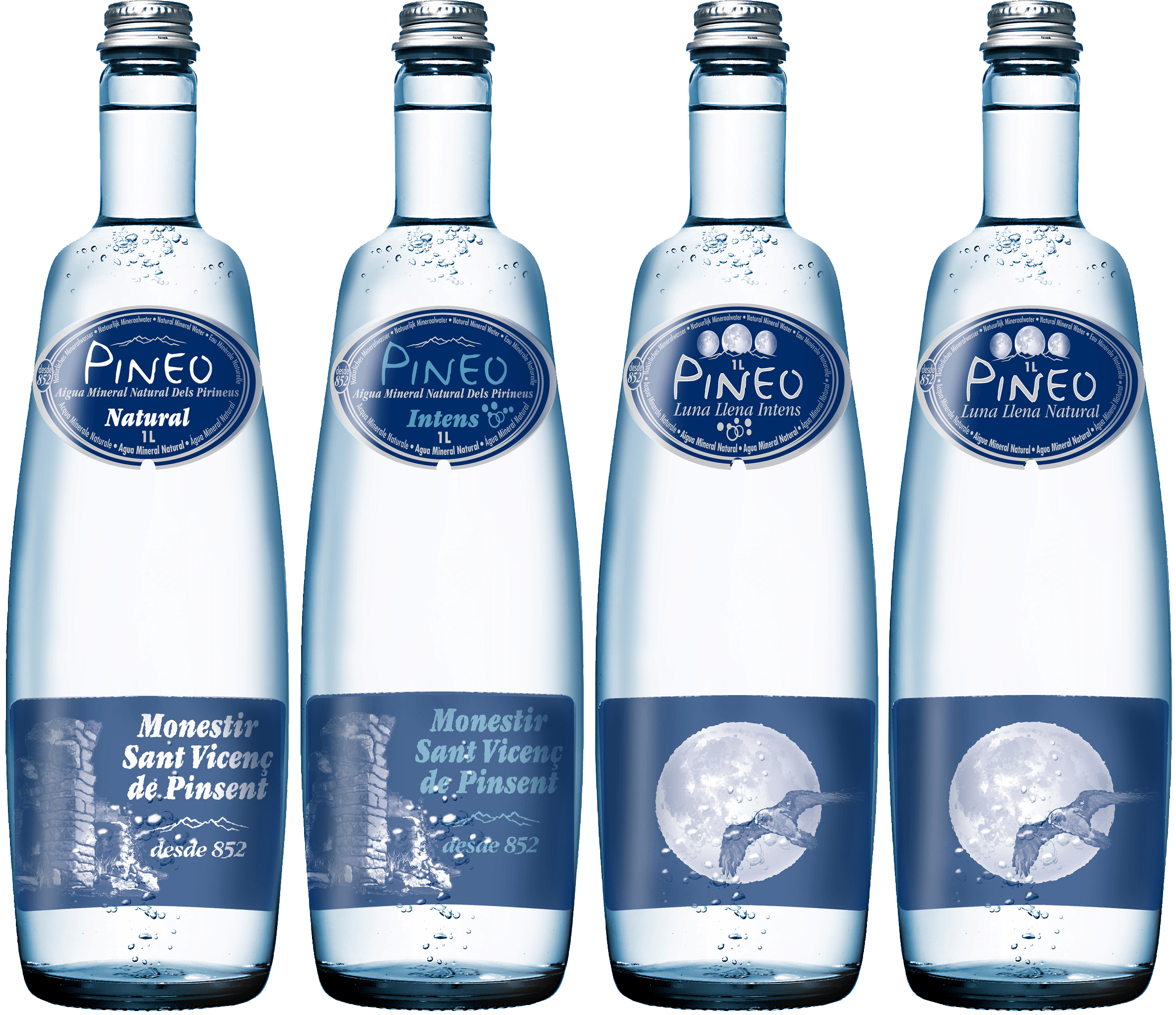Healthy Pineo water