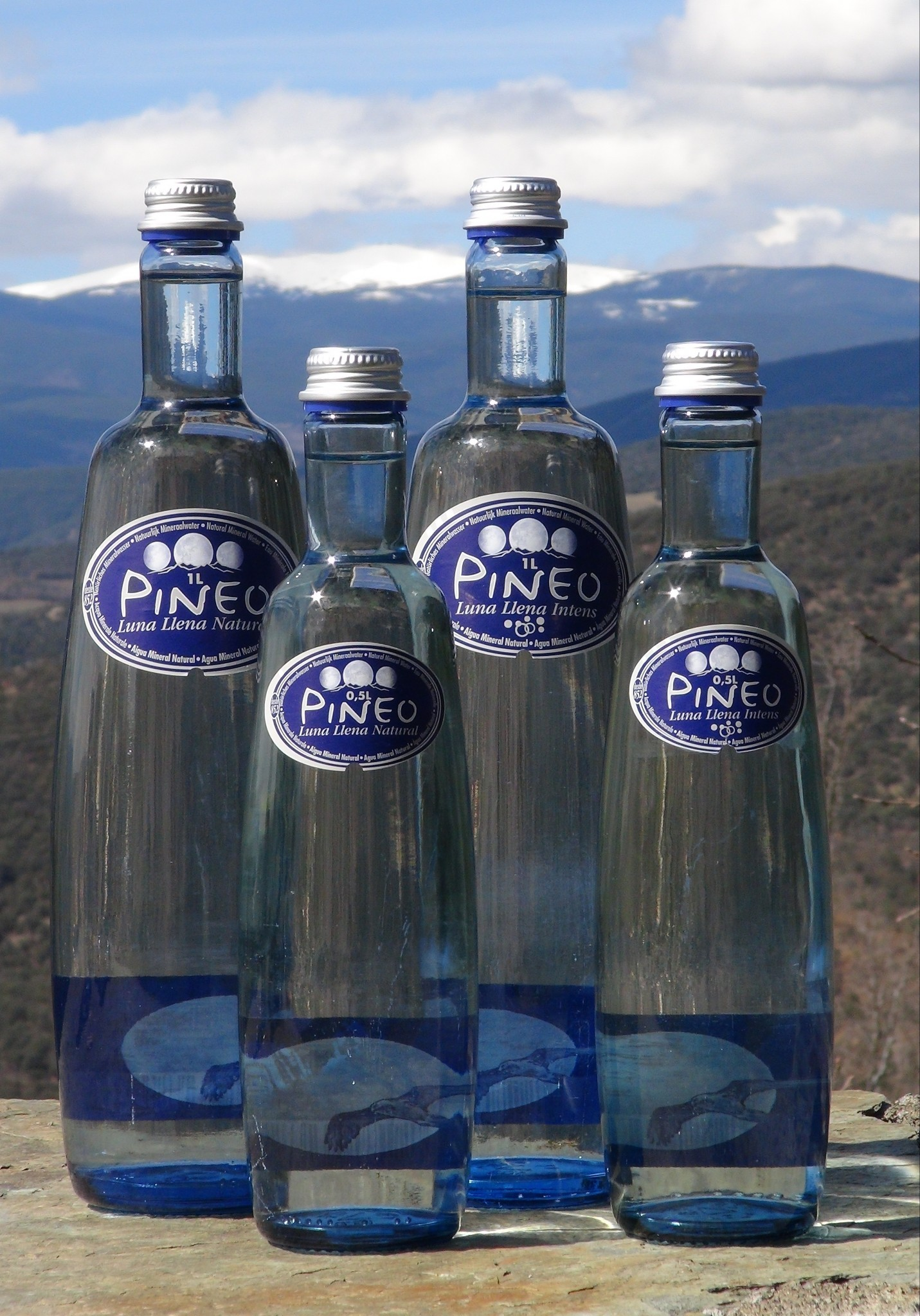 Pineo water range in 1 l glass bottles