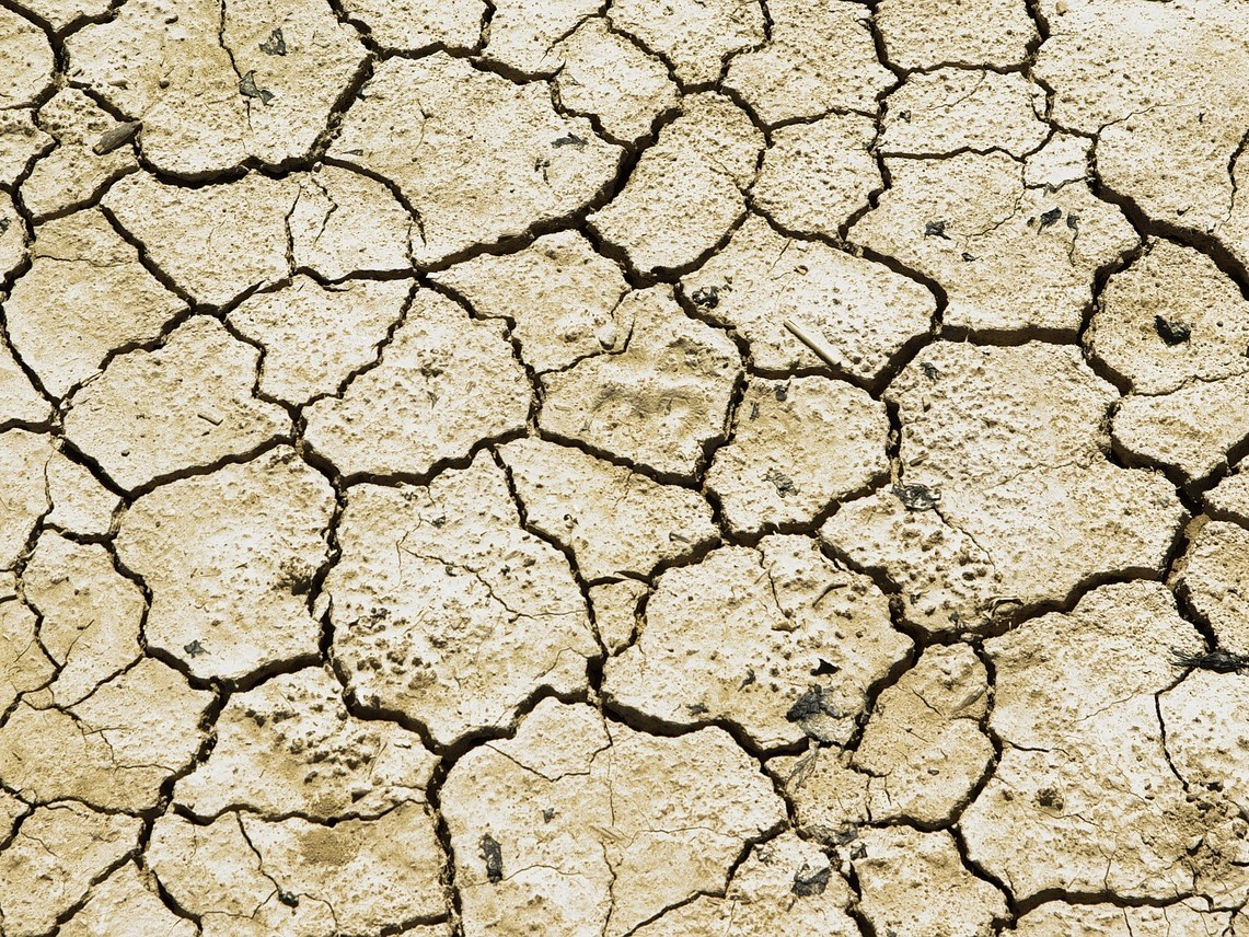 Dry soil due to persistent drought